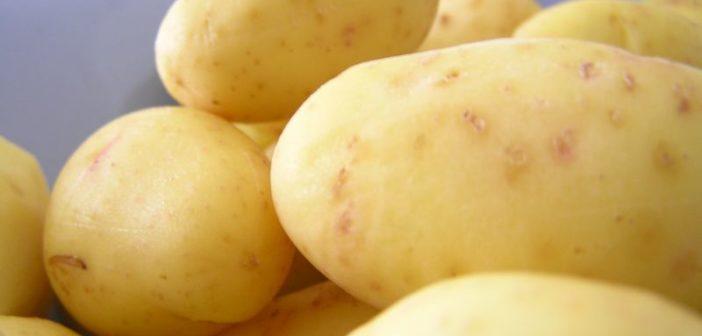 Kalorien Kartoffeln