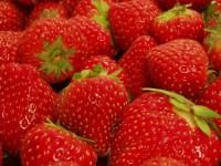 erdbeeren fruchtiger gesunder genuss zur sommerzeit die frische k che. Black Bedroom Furniture Sets. Home Design Ideas