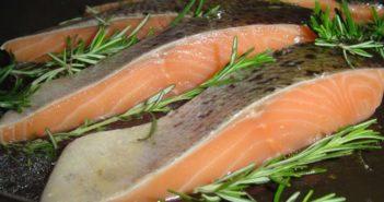 Fisch zubereiten